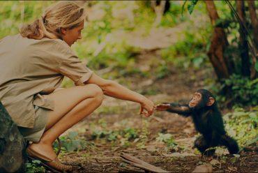 O scrisoare emoționantă de la Jane Goodall pentru copii despre cum cititul i-a schimbat viața