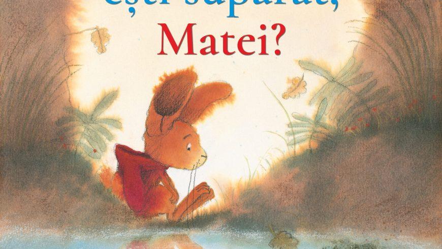 De ce ești supărat, Matei?