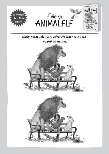 Activități cu Evie și animalele